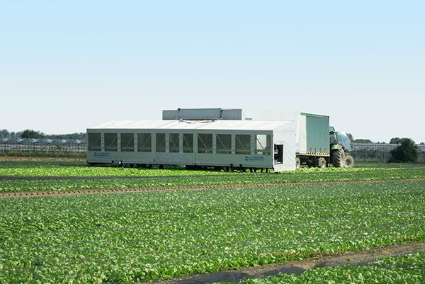 Erntemaschine auf Feld