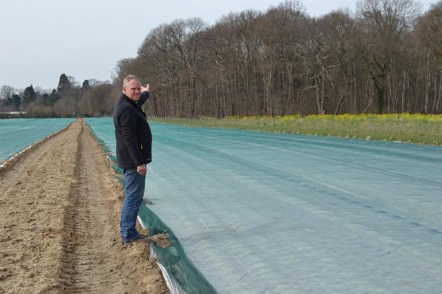 Stoffers Gemüsebau Krefeld - erste Pflanzen auf dem Feld